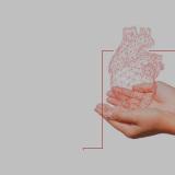 5° CARDIO VENICE. NUOVI APPROCCI MULTIDISCIPLINARI ALLO SCOMPENSO: GESTIONE CLINICA E SOSTENIBILE NEL 2017